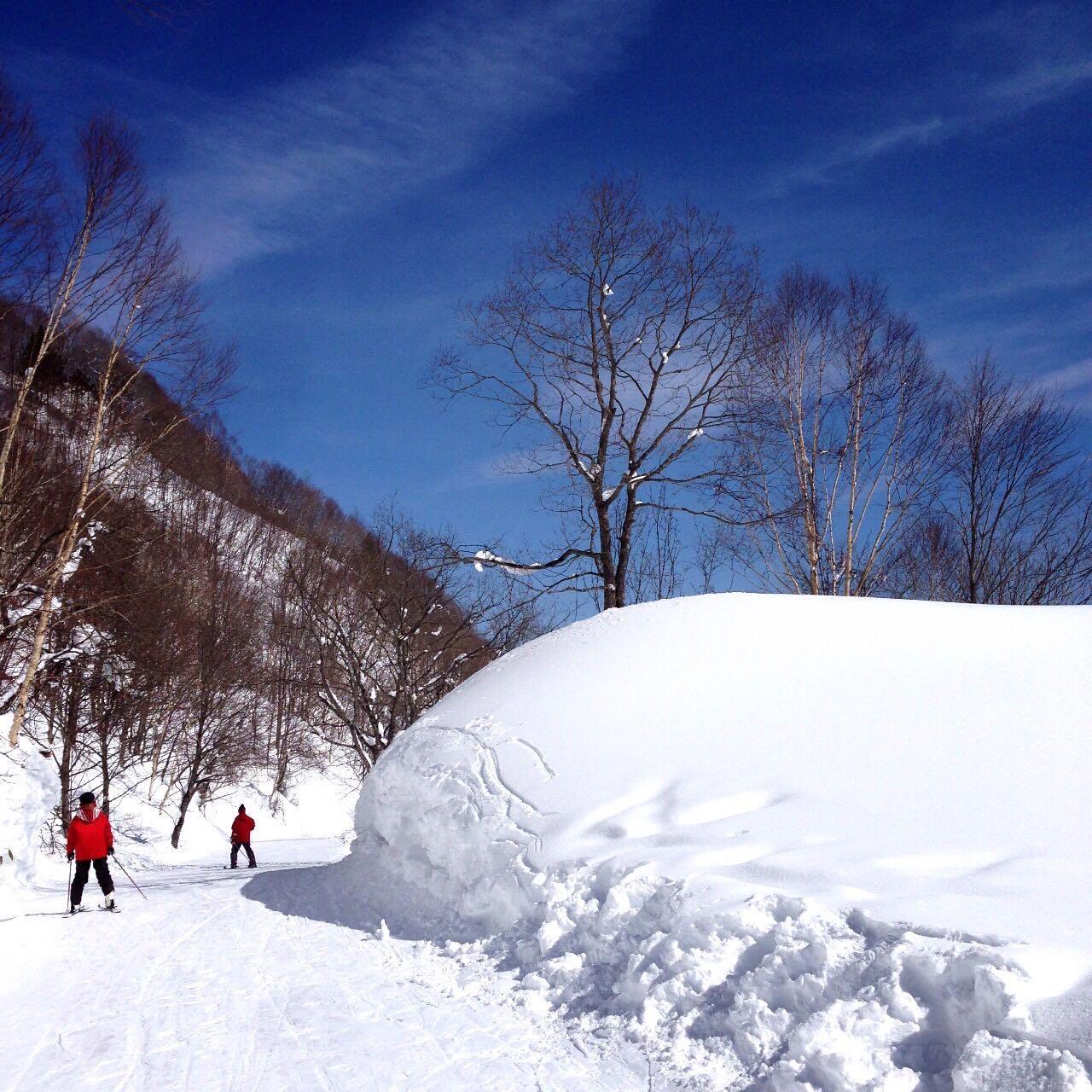 相比中国的滑雪场,日本的滑雪场怎么样?值得一
