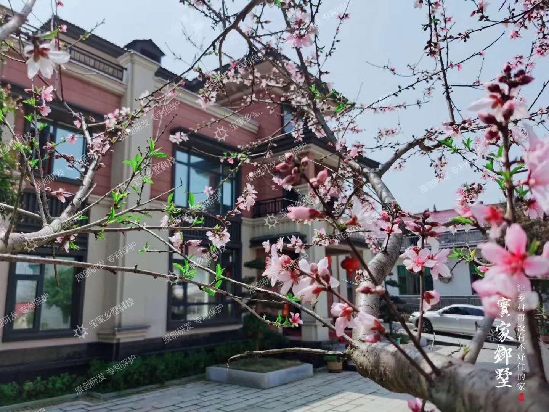 养老院老人生活图片_2020年最新乡村宅基地相关政策,想在老家建房的看这里! - 知乎