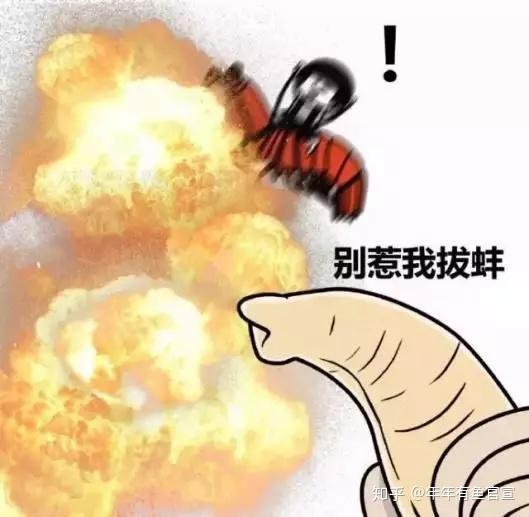 邓琳颖:深圳杰曼科技GM8802手机版