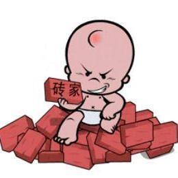 brickspert