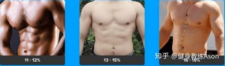 体 脂肪 率 理想 男性