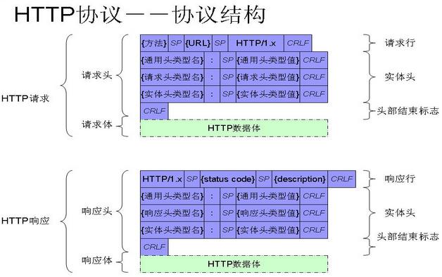 爬虫入门到精通-HTTP协议的讲解