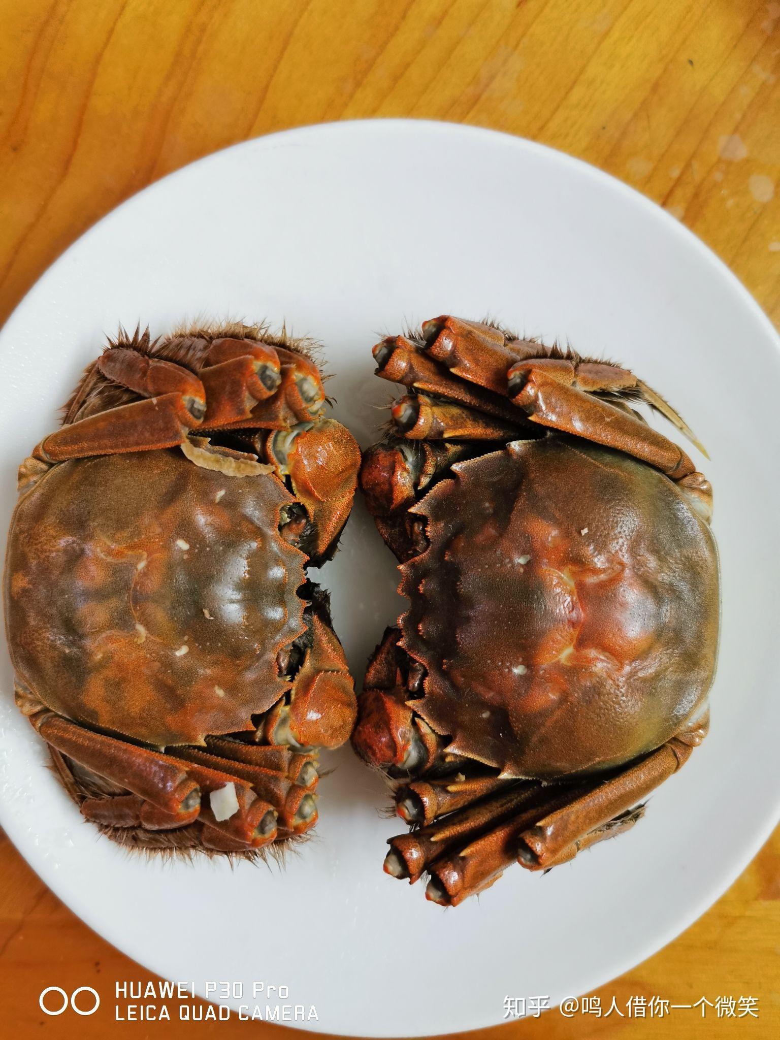 蒸好的螃蟹如何保存_清蒸螃蟹怎么蒸好吃? - 知乎