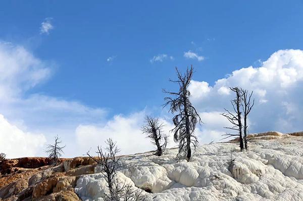 关卡No.44110:美国黄石国家公园(Yellowstone)