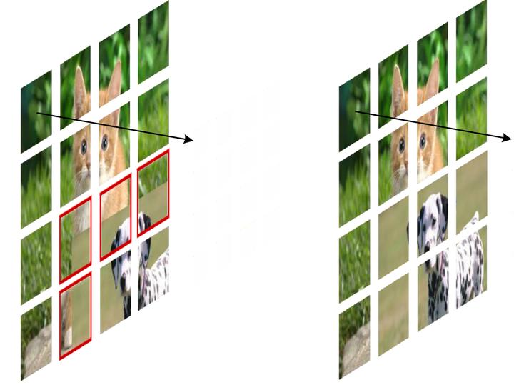 图5:CutMix\(左\) 和 MixToken\(右\)