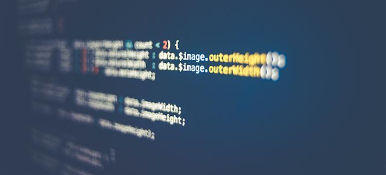 你的第一门编程语言