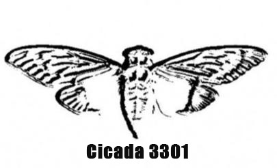 "Cicada 3301:一只潜伏于互联网深处的""蝉""(一)"
